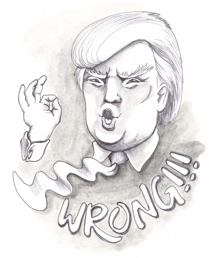 Trumps Head